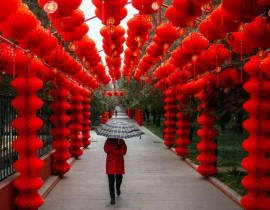 41169625-1-41169816-16-01-2017-china-spring-festival-1485601434702